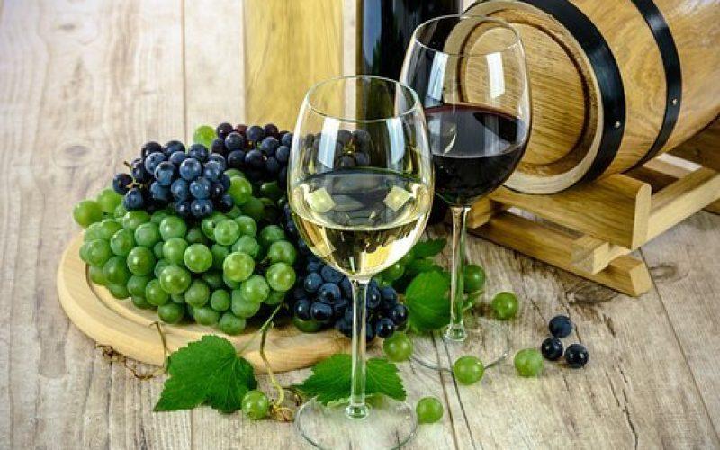 wines-1761613__340